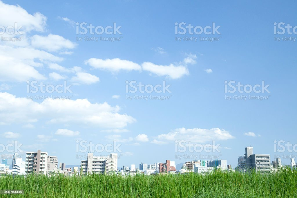 Pradera y a la ciudad - foto de stock