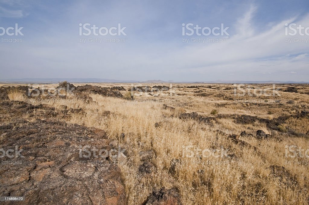 Grassland and Volcanic Rock royalty-free stock photo