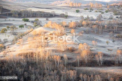 Grassland autumn landscape