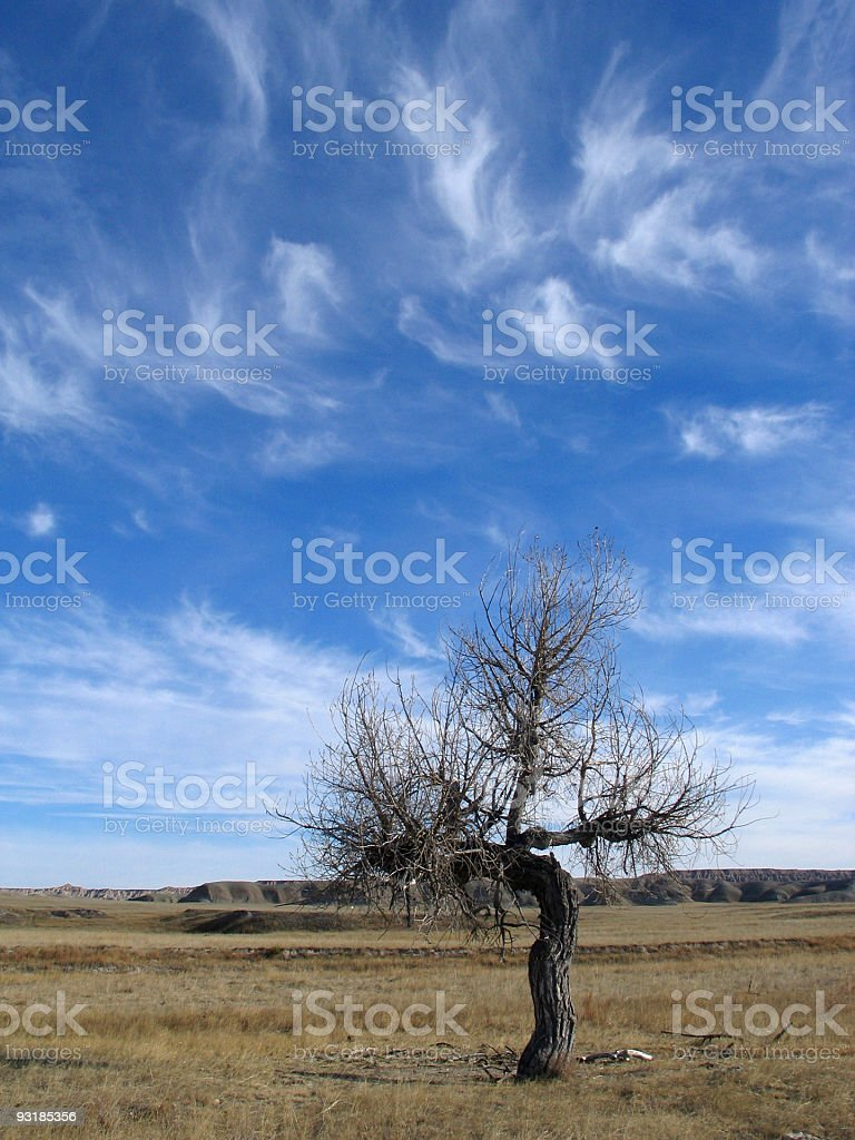 grassland cloudscape royalty-free stock photo