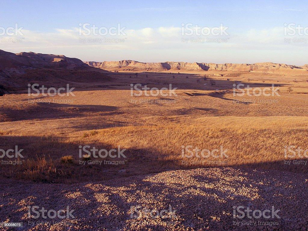 grassland galore stock photo