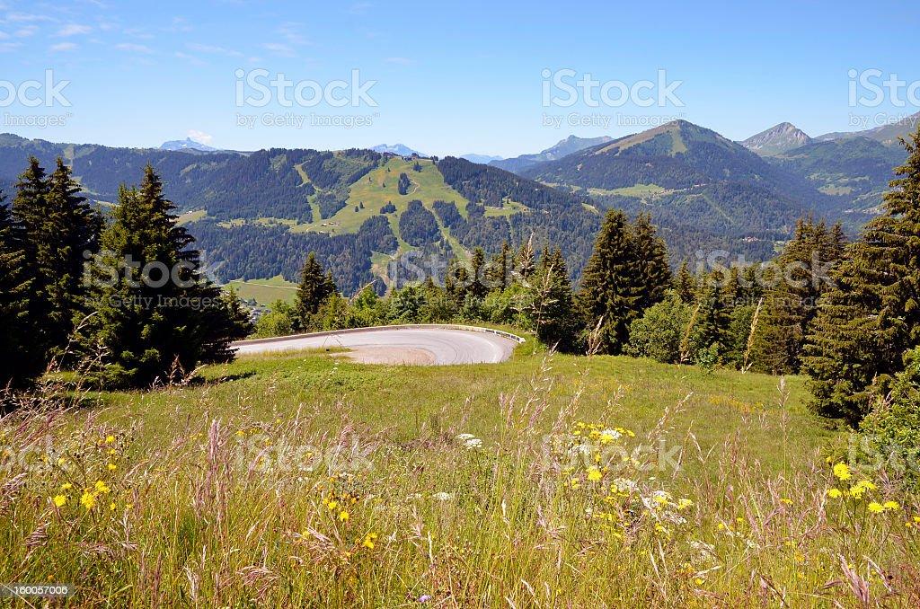 Grassland dans les Alpes françaises - Photo