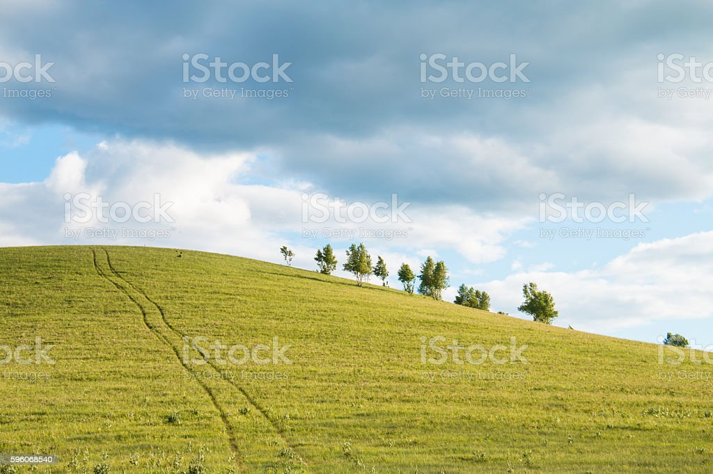Grassland royalty-free stock photo
