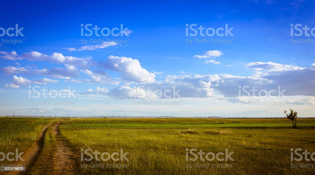 grassland scenes royalty-free stock photo