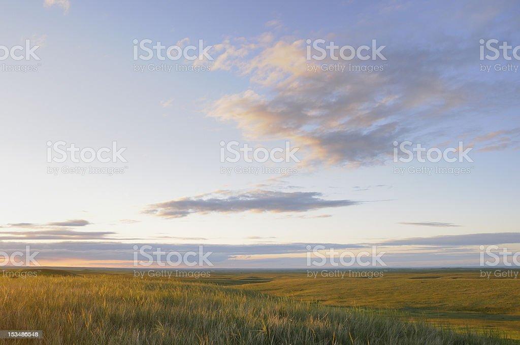 Grasslands stock photo