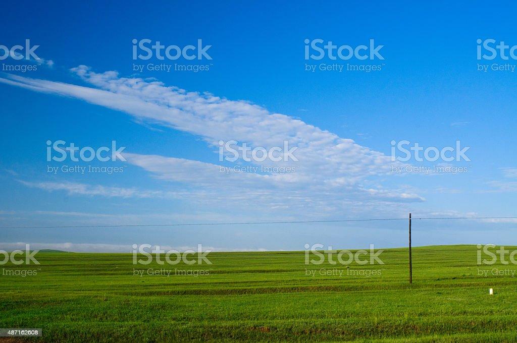 grasslands – Foto