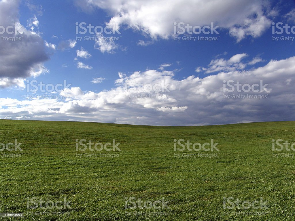 Grassy Field, Blue Sky royalty-free stock photo