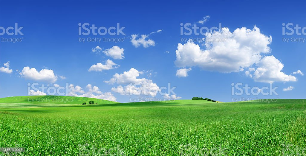 Grassy field landscape with bright blue sky royalty-free stock photo