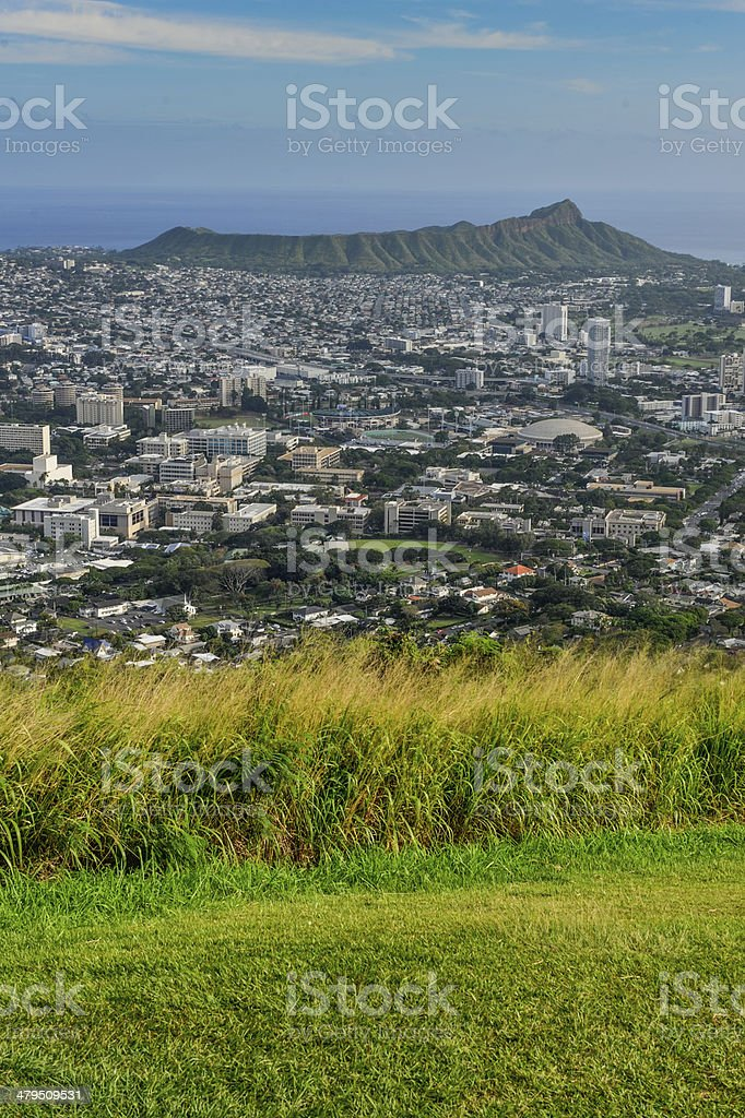 Grassy field with Diamond Head in the background stock photo
