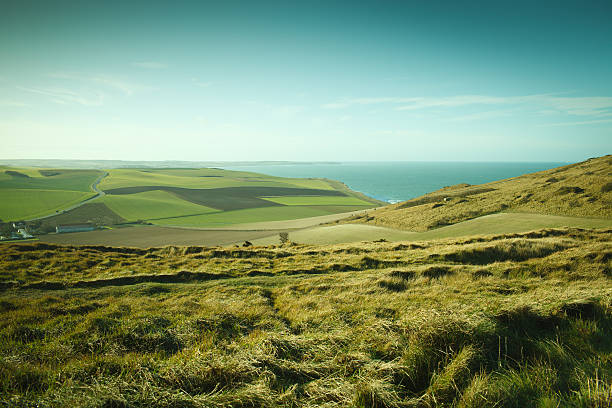 Grassy fields on cliffs in northern France Grassy fields on cliffs in northern France normandy stock pictures, royalty-free photos & images