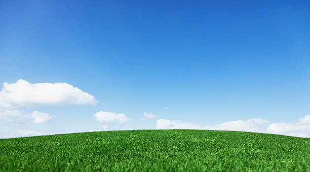 Grassy hill beautiful blue sky horizon stock photo