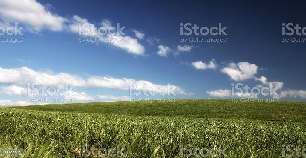 Grassy Hill stock photo