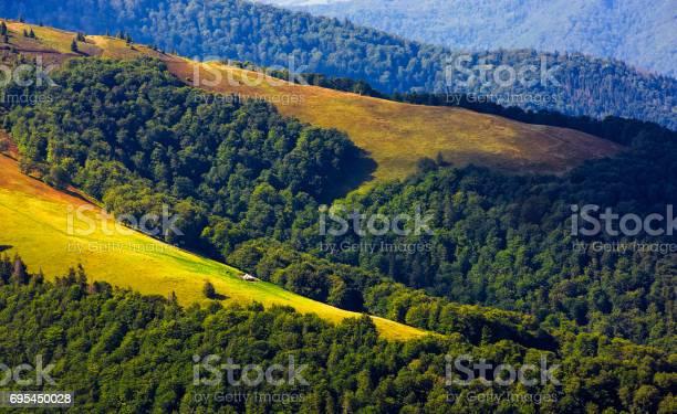 Photo of grassy hillside on mountain in summer