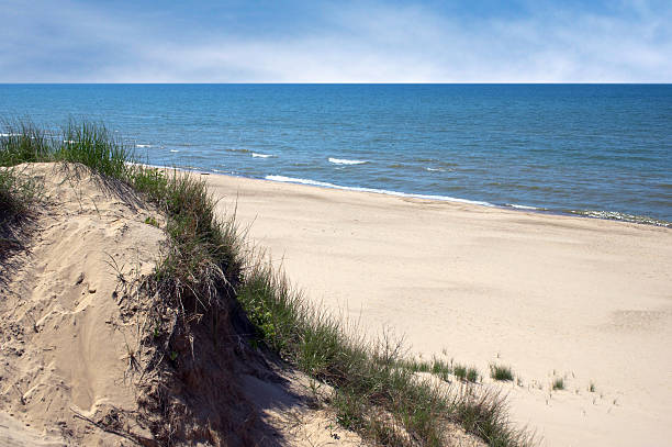 grassy indiana dunes next to beautiful sand beach and ocean - sand dune stock photos and pictures