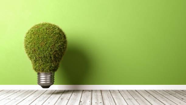 ampoule herbeux sur plancher en bois - efficacité énergétique photos et images de collection