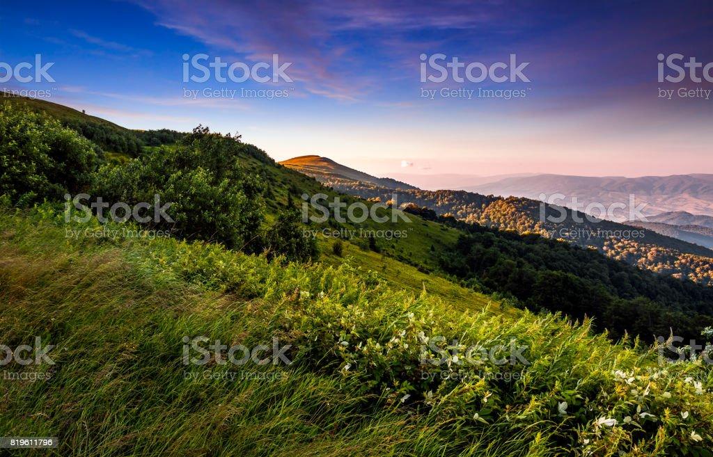 grassy meadow on a hillside at beautiful reddish sunrise stock photo