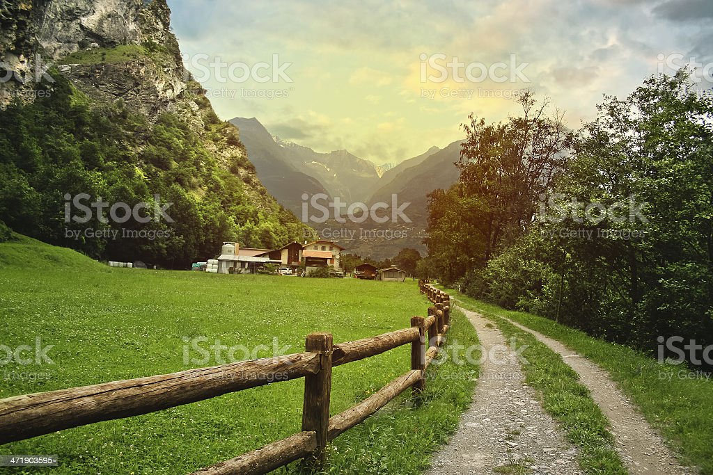 A grassy path leading to the Swiss Alps stock photo