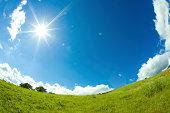 芝生プレーンと太陽