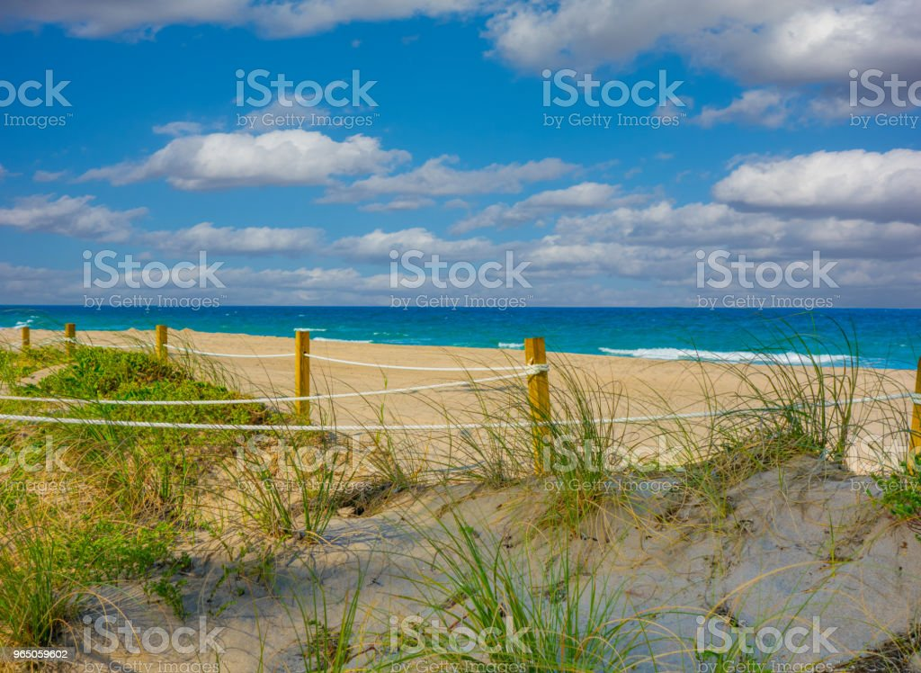 Grassy sand dunes with rope fence in Fort Lauderdale, Florida royalty-free stock photo