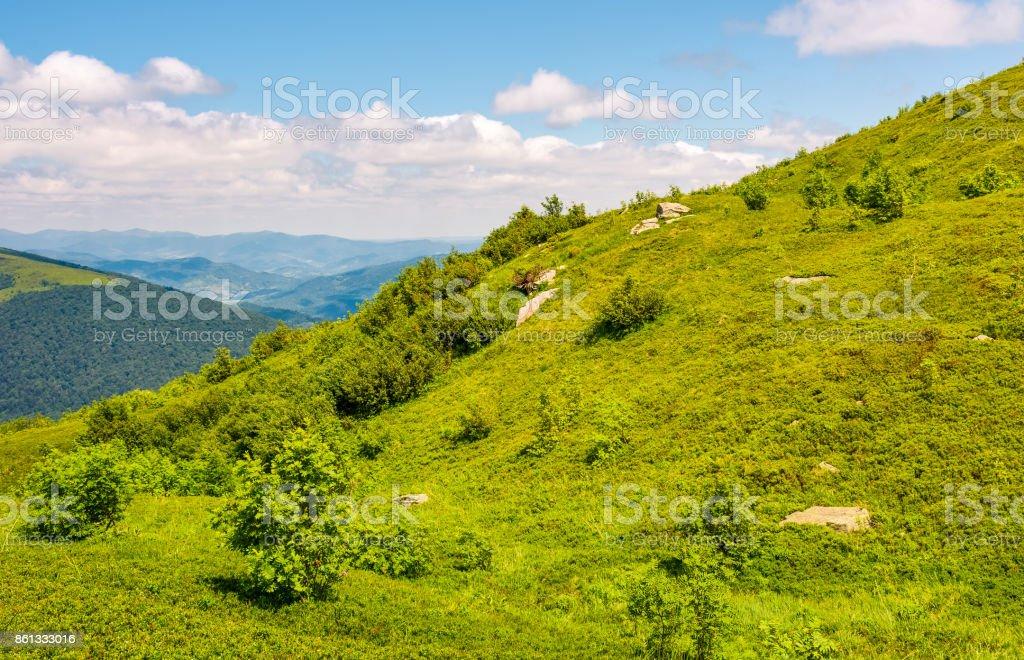 grassy slippery slope of mountain ridge stock photo