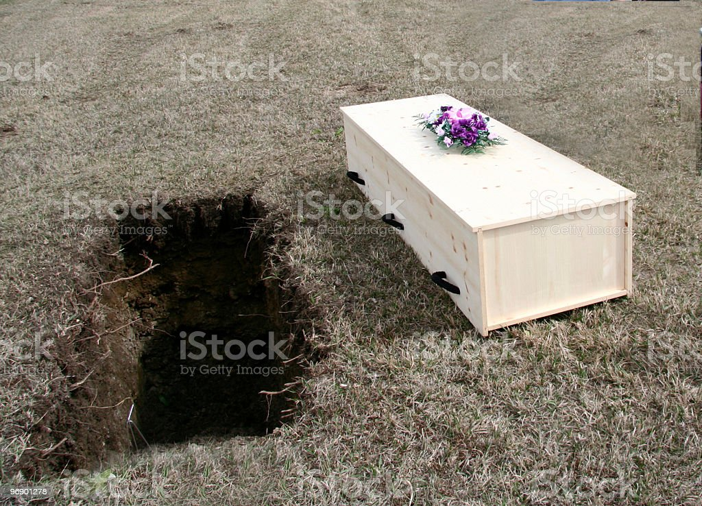 grave and pine coffin royalty-free stock photo
