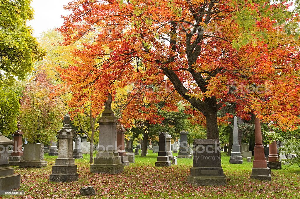 Grave stones and memorials under a red maple tree stock photo