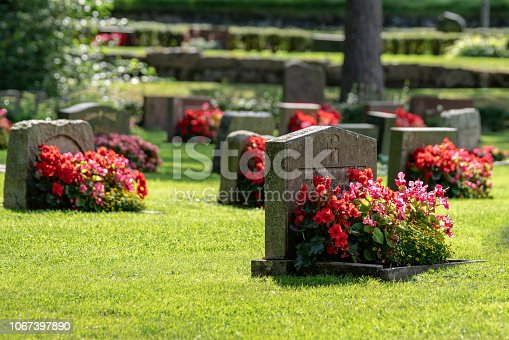 Sun shining on gravestones with red and pink flowers on a beautiful and well cared cemetery in Sweden