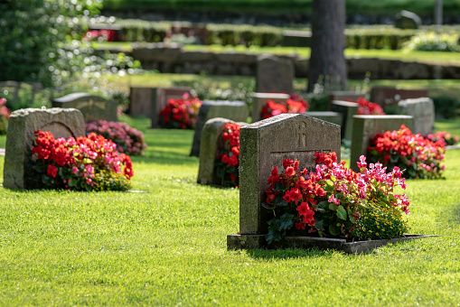 Grave stones with beautiful red and pink flowers in bright sunshine