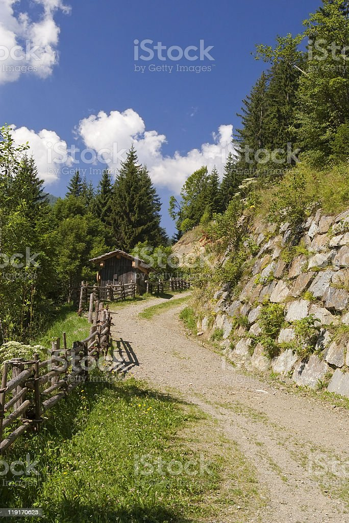 gravel forestry road in austrian alps royalty-free stock photo