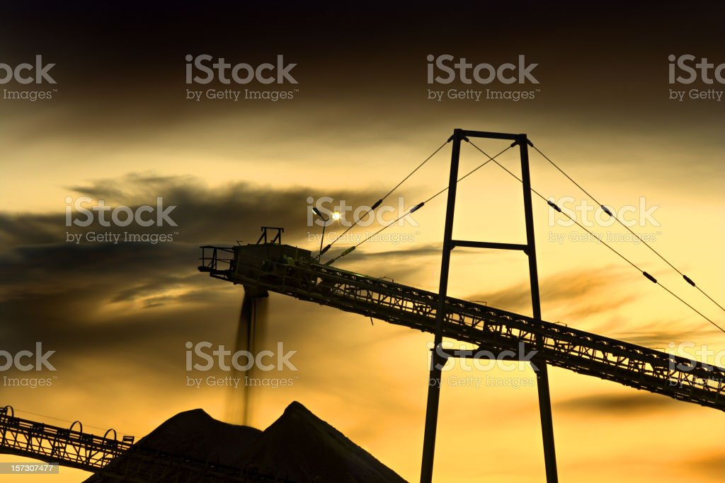 Gravel Plant Detail royalty-free stock photo