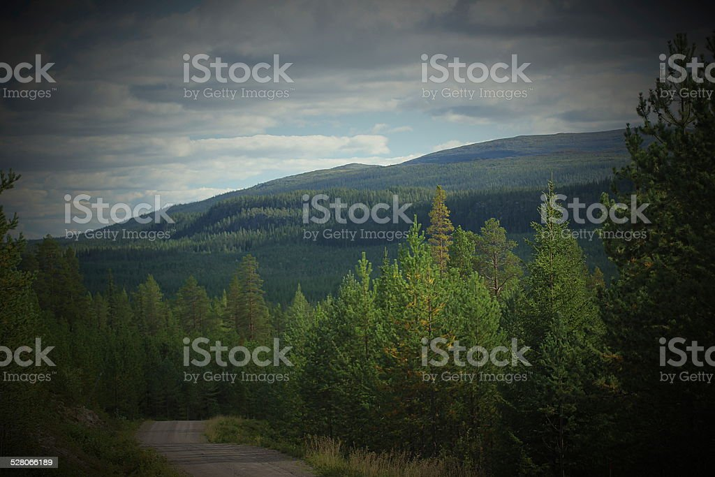 Gravel Road In Swedish Mountains stock photo