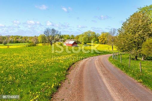 istock Gravel road through rural landscape in spring 957240022