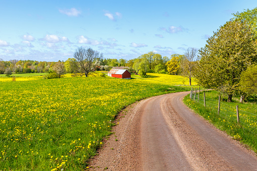 Gravel road through rural landscape in spring