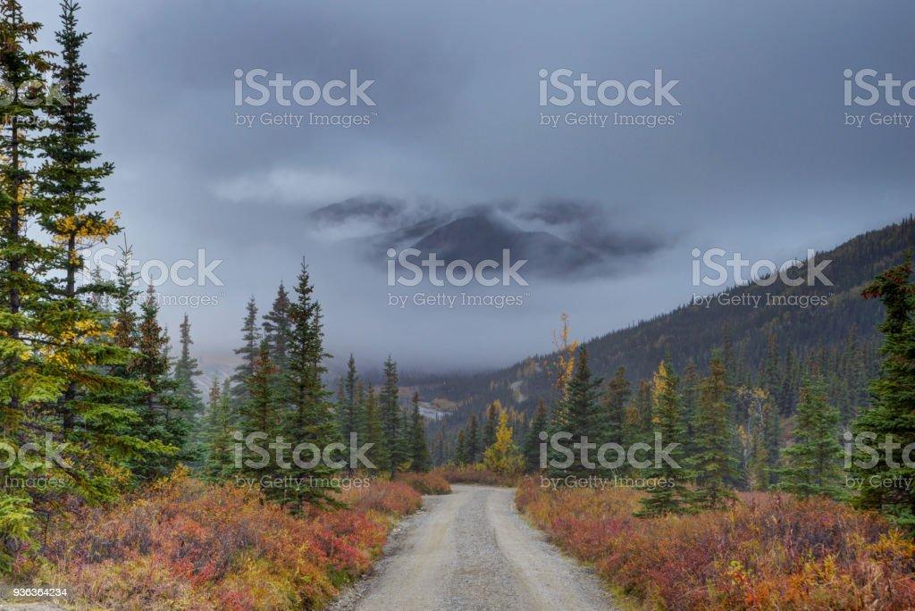 A gravel road winds the way through Alaska's forests toward Mt. Denali's mountain. stock photo