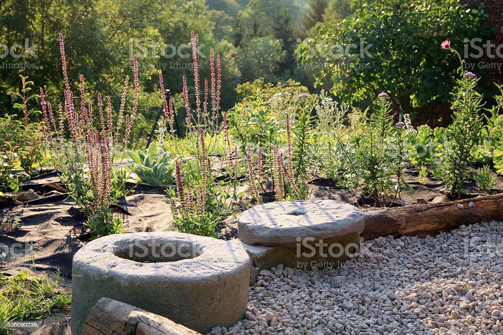 Grava Terraza Con Parche De Perennials Foto De Stock Y Más