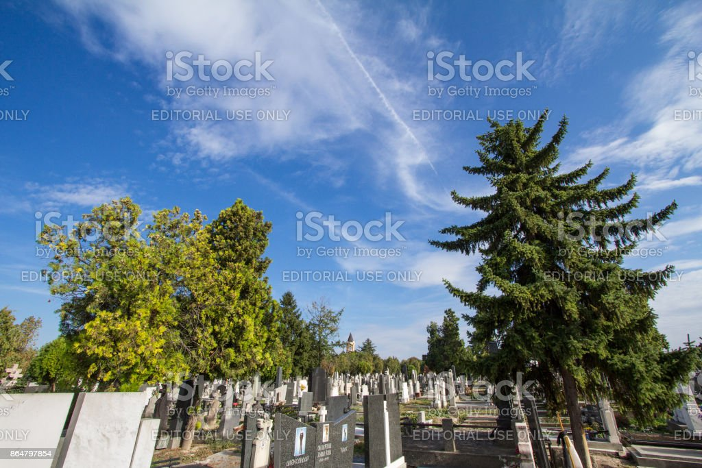 Graves and tombs in the Orthodox cemetry of Zemun, northeast of Belgrade. Gardos tower can be seen in background stock photo