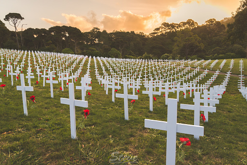 Graves of Anzac Soldiers