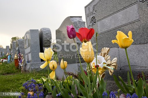 Flowers at the grave.