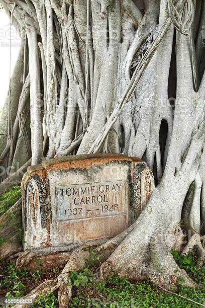 Gravestone at Woodlawn Cemetery