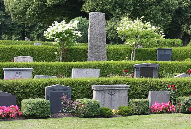 Graveyard of perfection bildbanksfoto