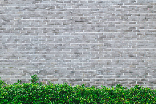gray brick wall modern style with green grass - ivy building imagens e fotografias de stock