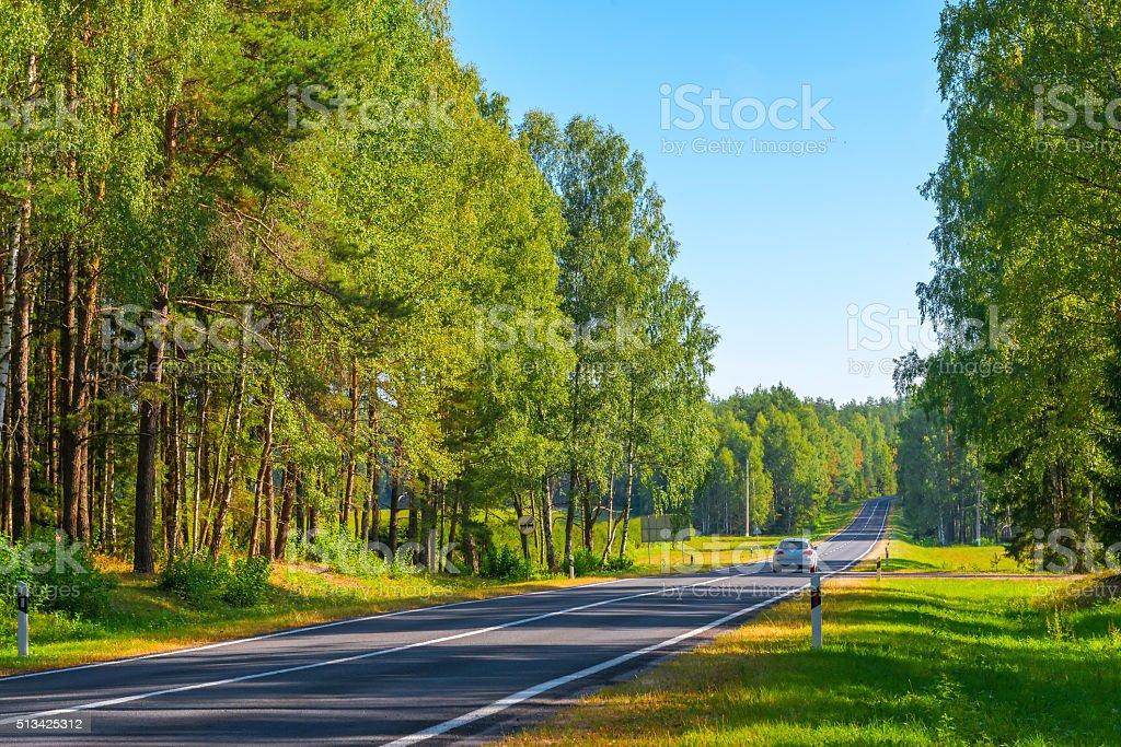 cinza carro em movimento em um suburbana estrada na área florestal - foto de acervo