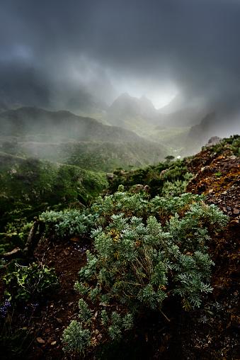 회색 구름 Teno 산맥 0명에 대한 스톡 사진 및 기타 이미지
