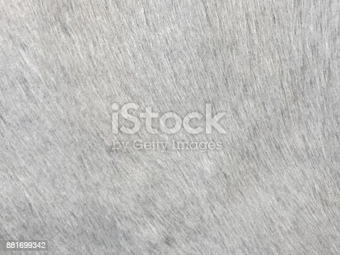 Gray cowhide textured leather