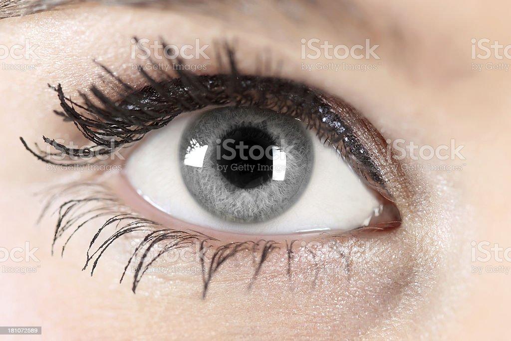 Gray eye royalty-free stock photo