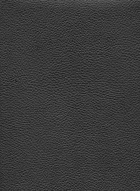 Gray de cuero - foto de stock
