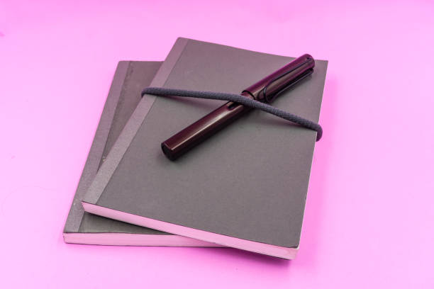 Gray Notebooks with dark brown Foutian pen on pink pastel background stock photo