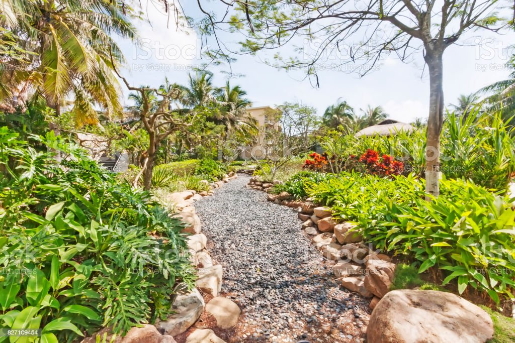 Photo de stock de Chemin Daccès Dans Le Jardin Tropical De Galets ...