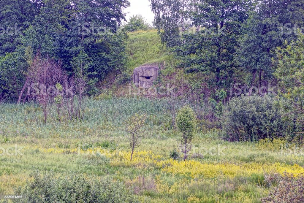 Gray pillbox with embrasure on the slope of the mountain stock photo