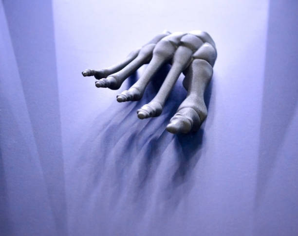 Gray prototype of the human foot skeleton printed on 3d printer on dark surface. stock photo